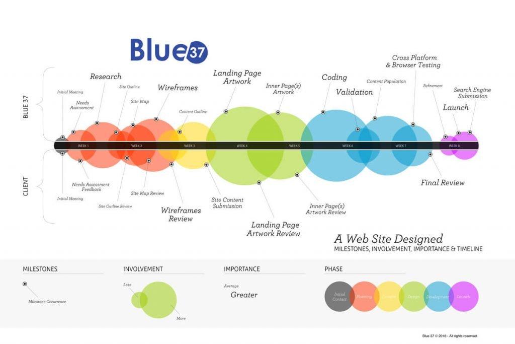 Blue 37 eight week timeline